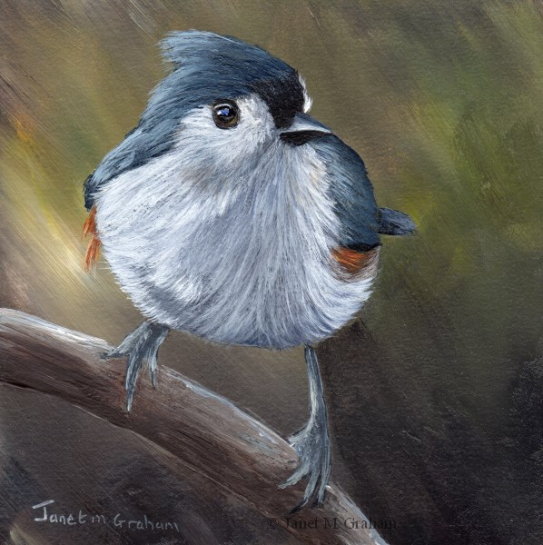"""Tufted Titmouse No 13"" original fine art by Janet Graham"