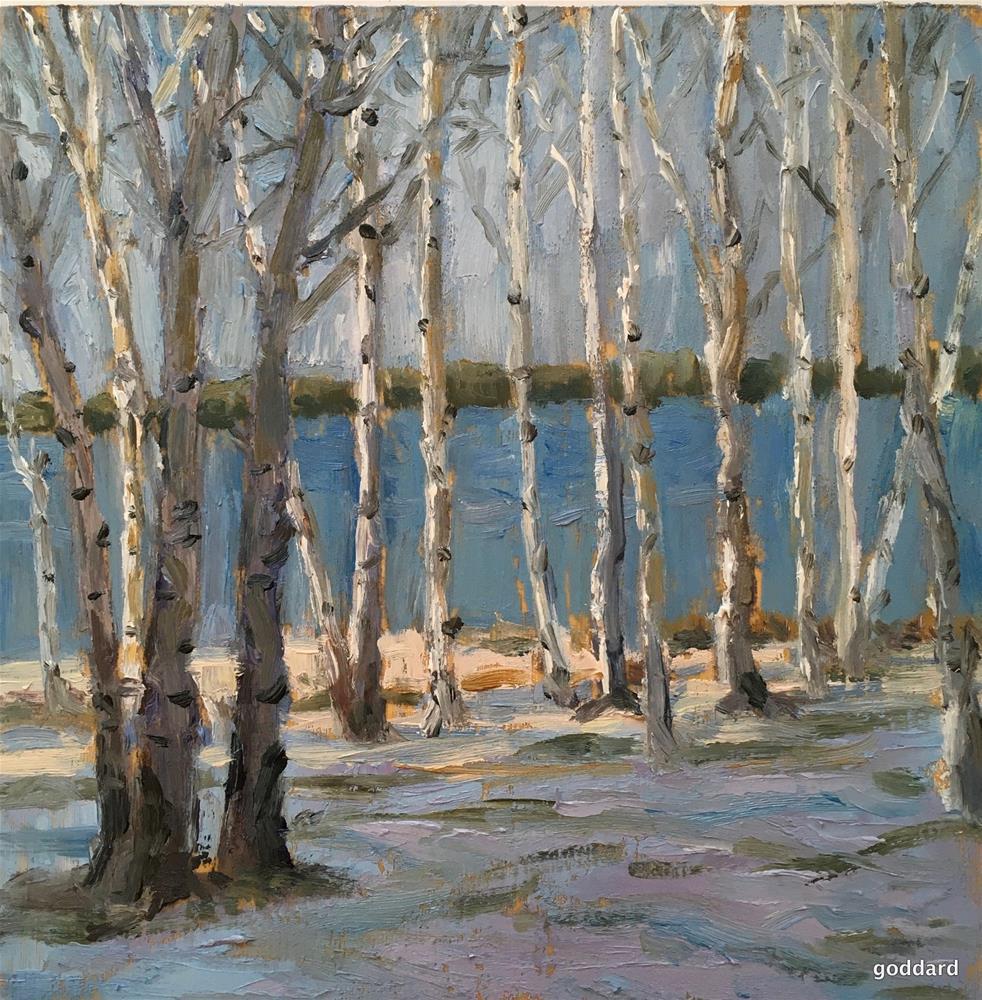 """""""Island Birch Grove"""" original fine art by Shari Goddard Shambaugh"""