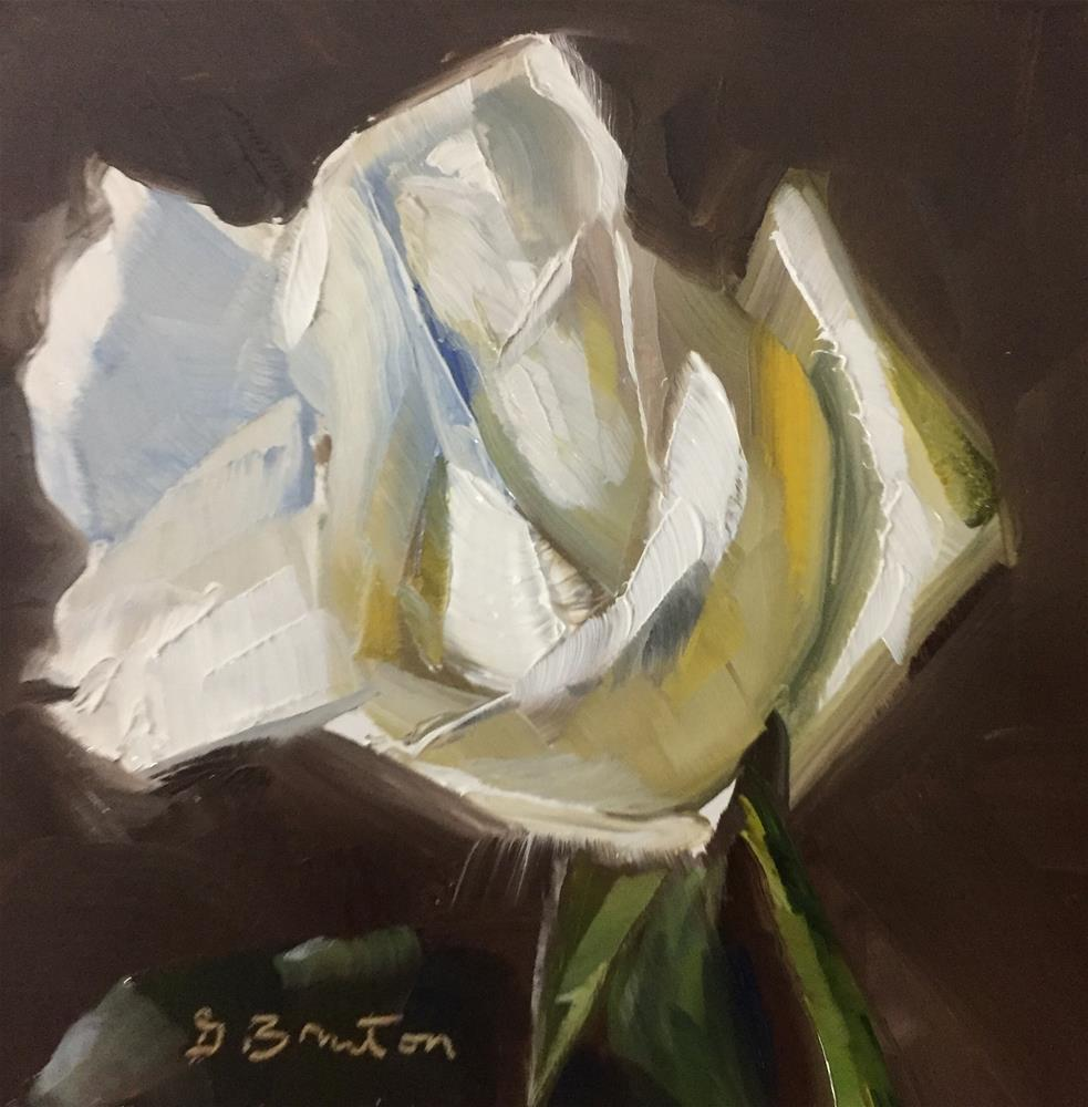 """White Rose"" original fine art by Gary Bruton"