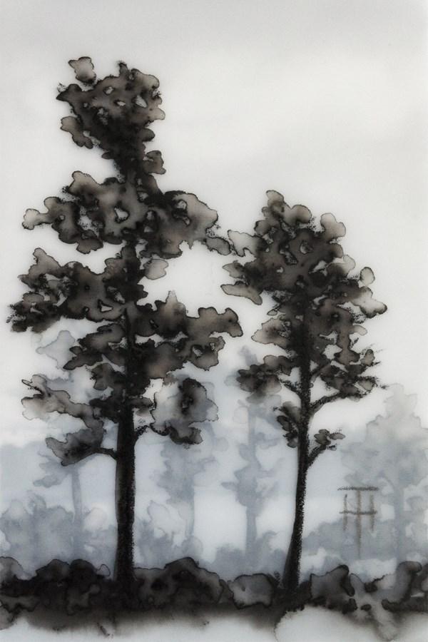 """Northern Ontario Trees"" original fine art by Terri Heinrichs"