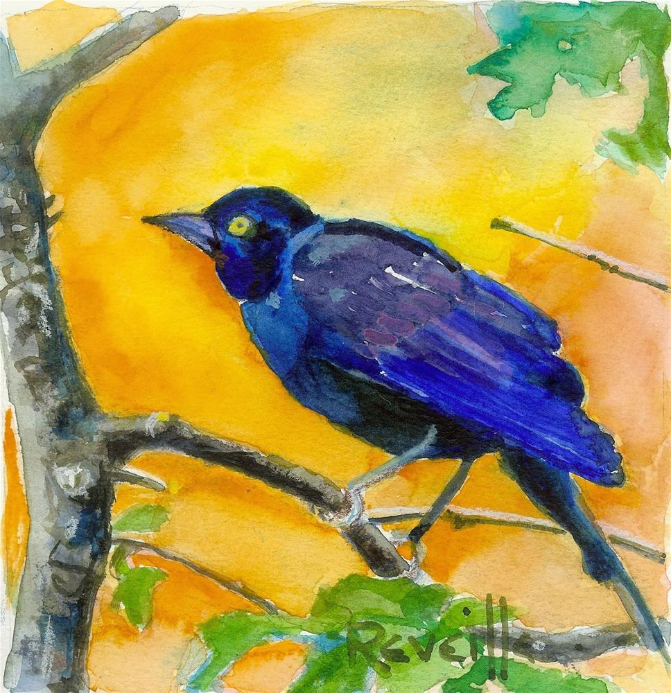 """Colorado Grackle Morning"" original fine art by Reveille Kennedy"