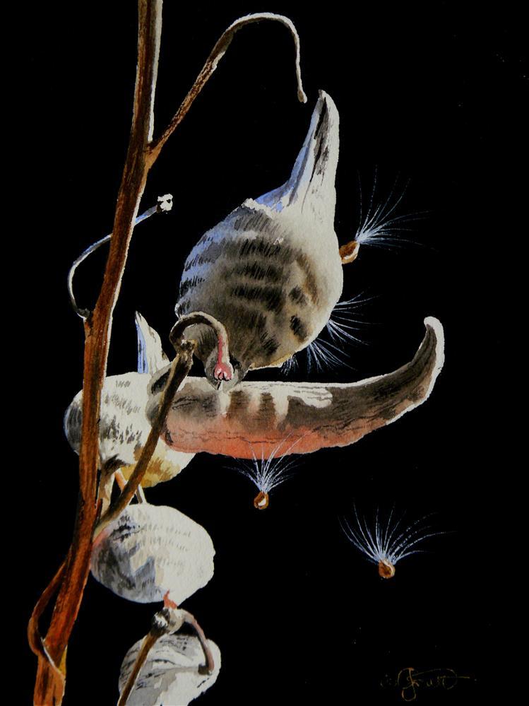 """Milkweed Pod"" original fine art by Jacqueline Gnott, TWSA, WHS"