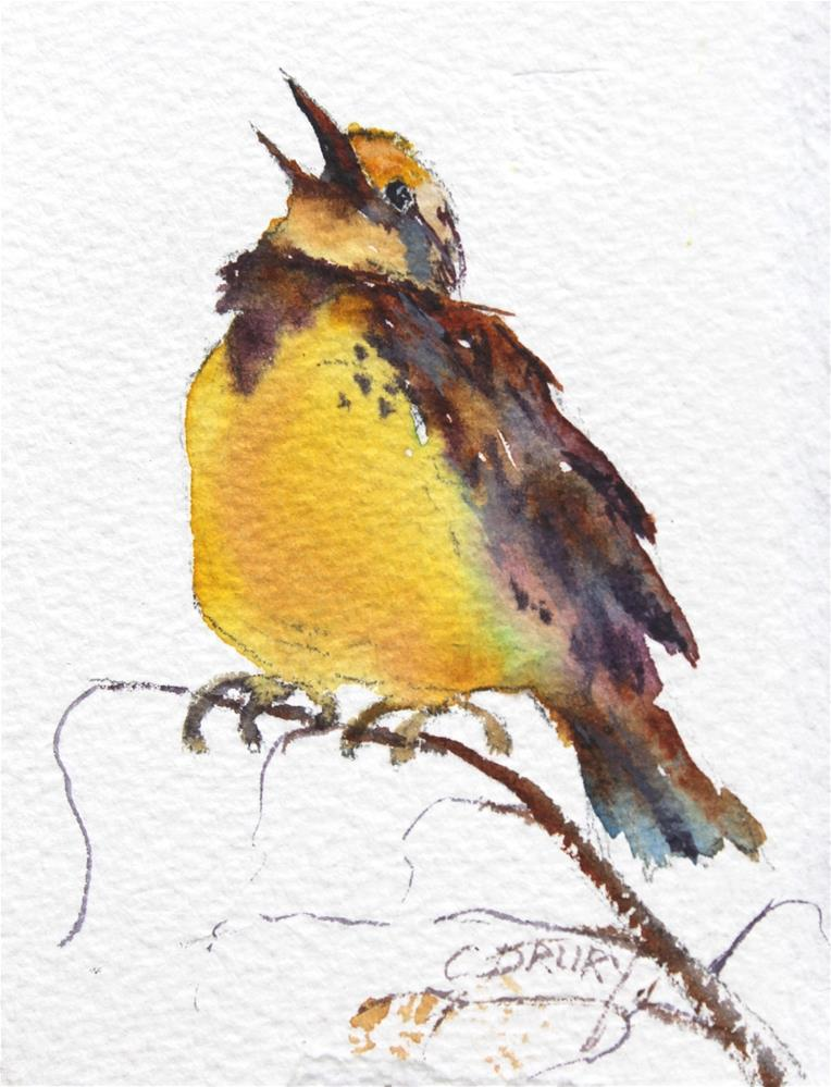 """Meadowlark"" original fine art by Colleen Drury"