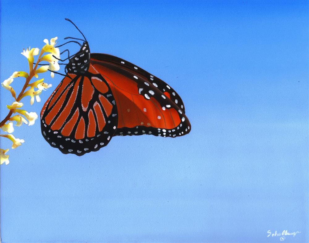 """""""Sky and Butterfly"""" original fine art by Fred Schollmeyer"""