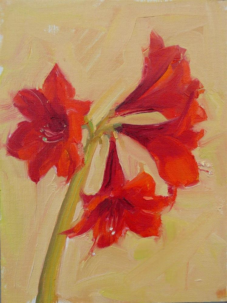 """Amaryllis #3,still life,oil on linen,12x9,price$200"" original fine art by Joy Olney"