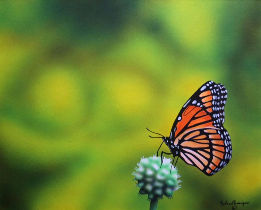 """""""July Butterfly"""" original fine art by Fred Schollmeyer"""