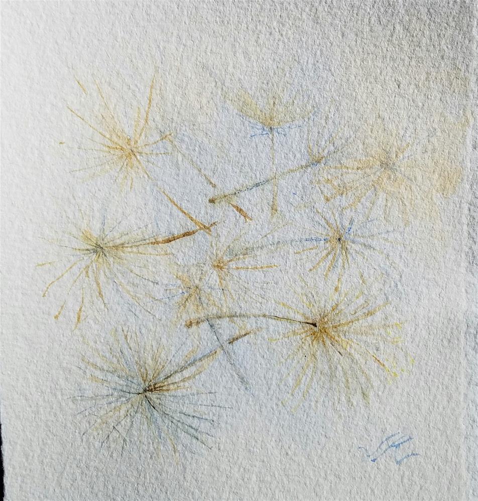 """""""Salsify Seed"""" original fine art by Jean Krueger"""