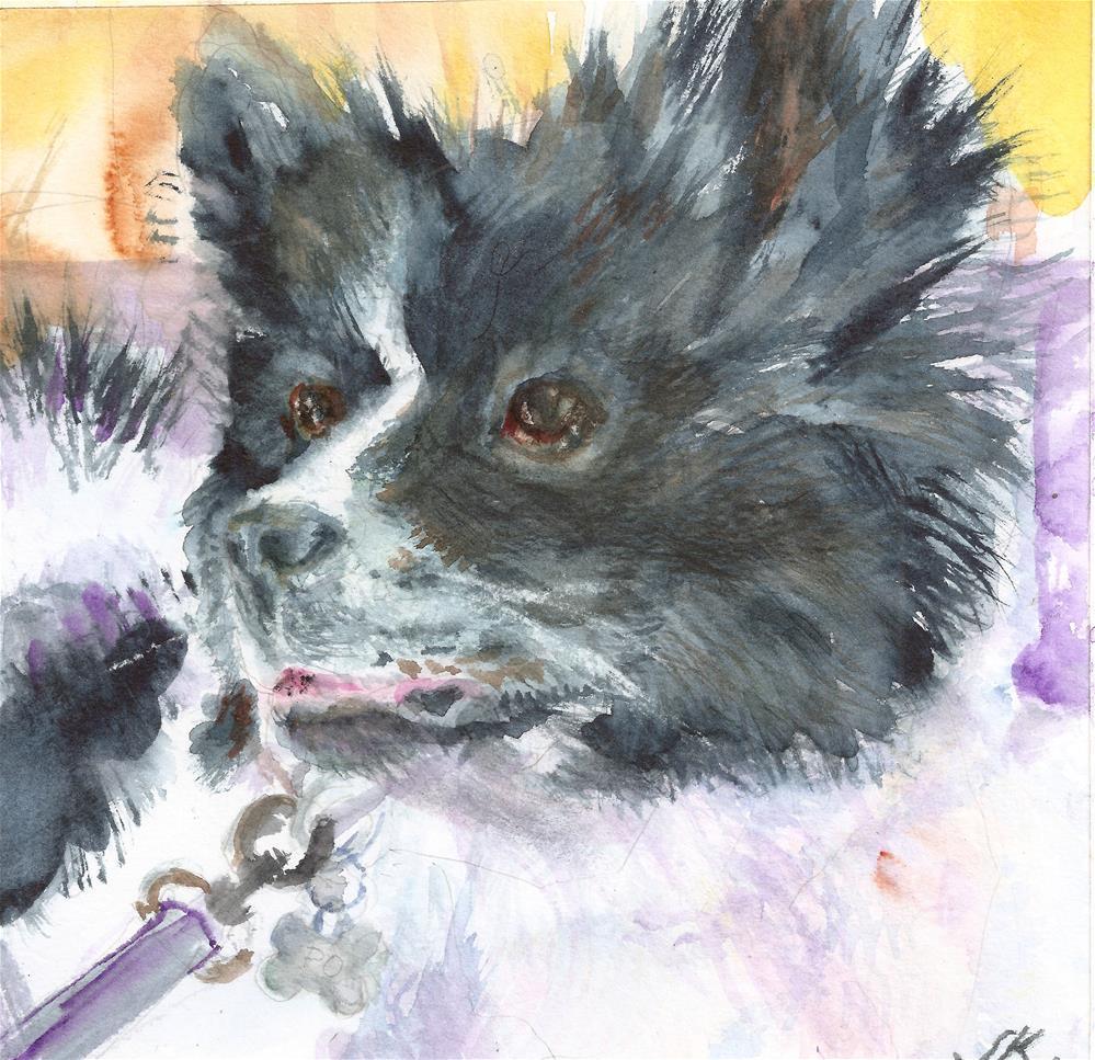 """""""Pomeranian"""" original fine art by Jean Krueger"""