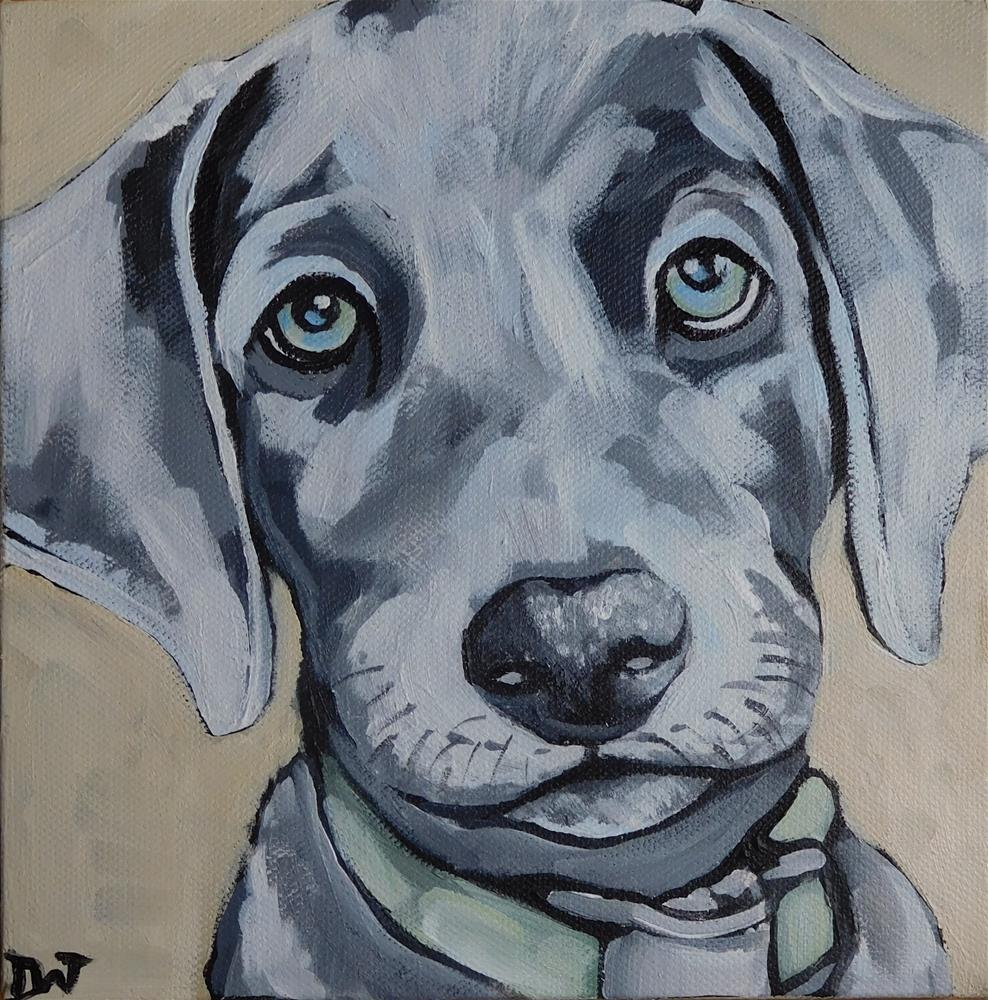 """""""Weimaraner Puppy"""" original fine art by Daryl West"""