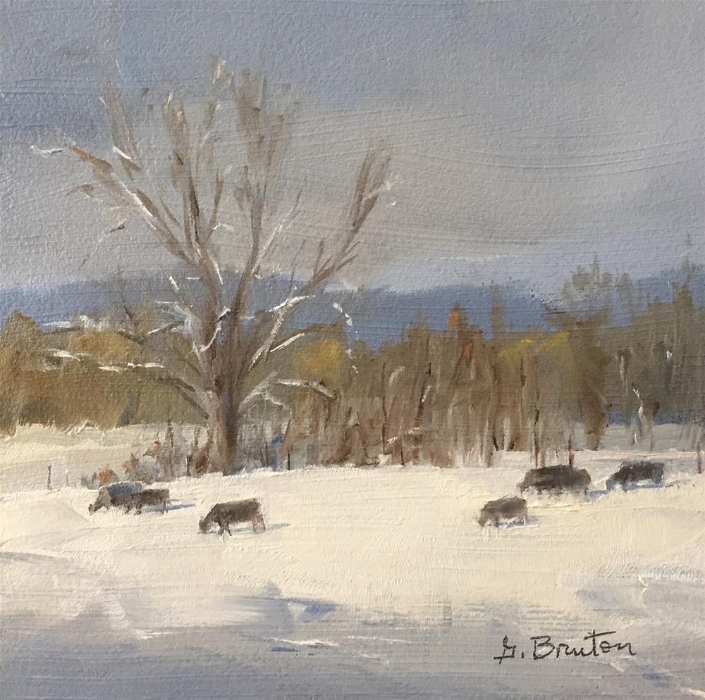 """Cows and Snow"" original fine art by Gary Bruton"