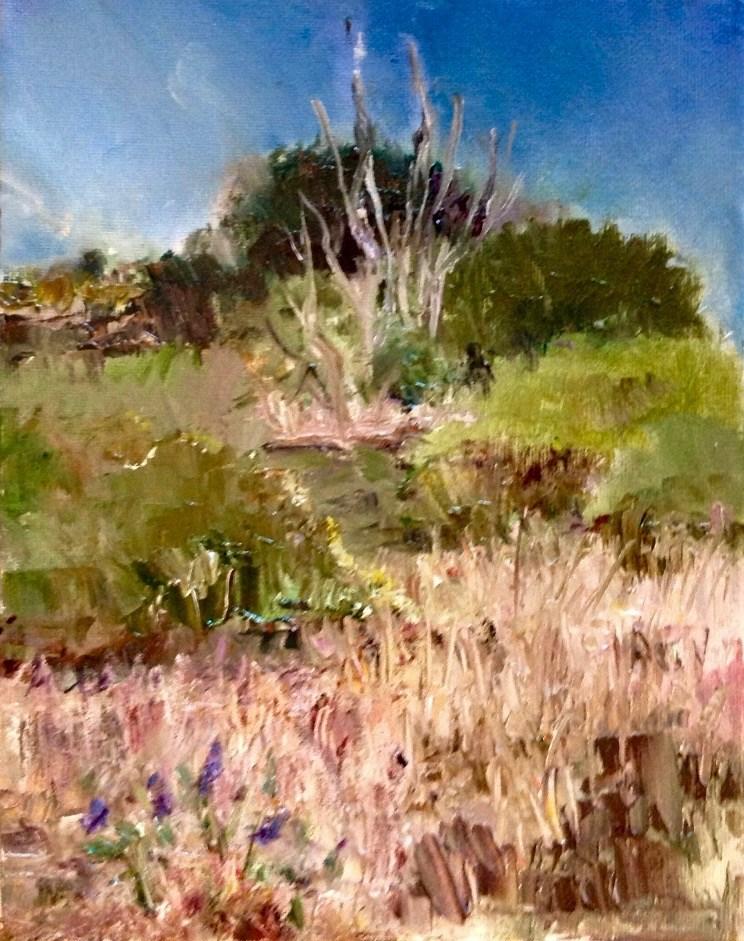 """""""Florida Prairie in Spring"""" original fine art by Judy Usavage"""