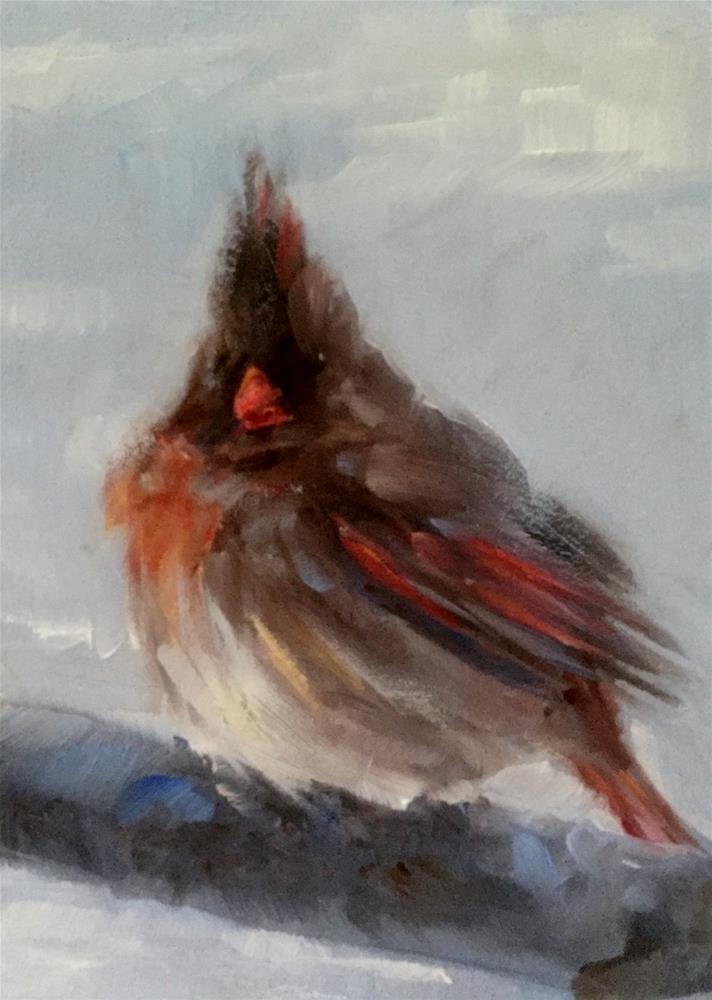 """Ms. Cardinal"" original fine art by Gary Bruton"