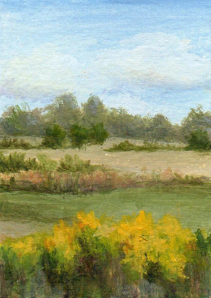 """Endless Fields"" original fine art by Debbie Shirley"