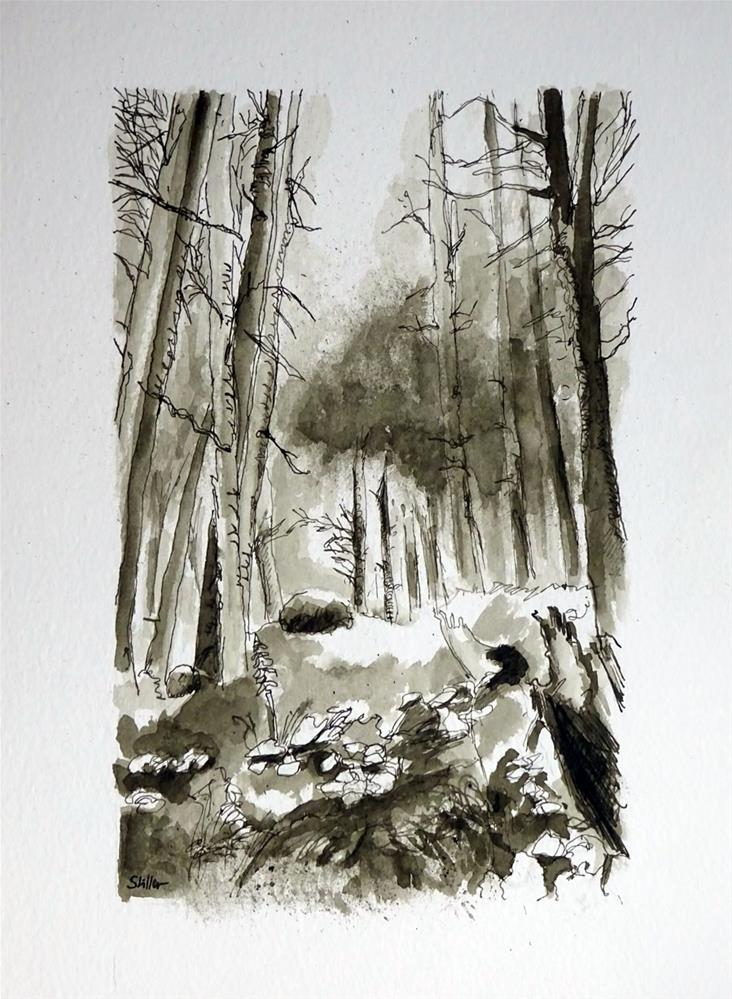 """2494 Forest Sketch"" original fine art by Dietmar Stiller"