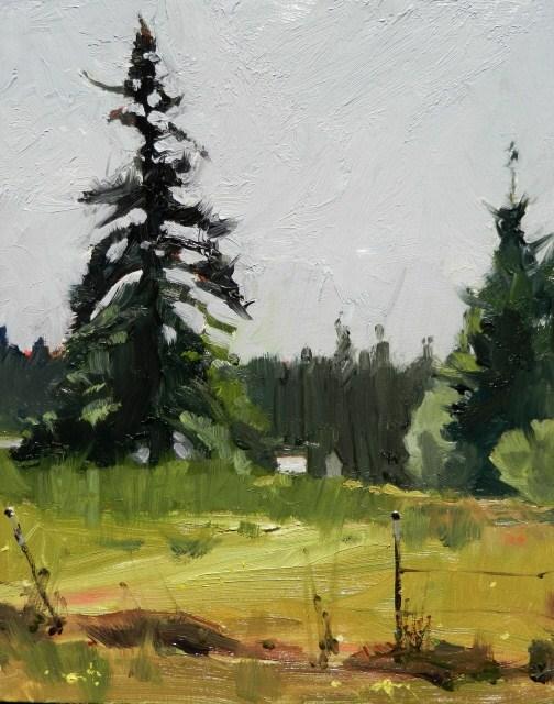 """""""Fir and Field study  plein air landscape by Robin Weiss"""" original fine art by Robin Weiss"""