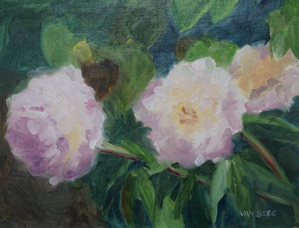 """""""Littleton Peonies"""" original fine art by Catherine Van Berg"""