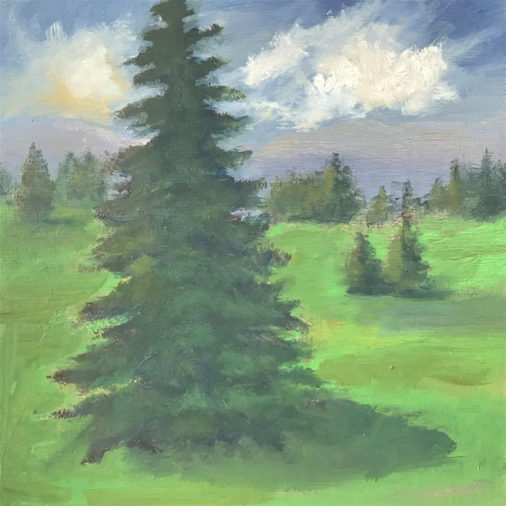 """field of pine trees"" original fine art by Betty Argiros"