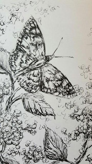 """Butterfly in the Wildflowers"" original fine art by Tammie Dickerson"