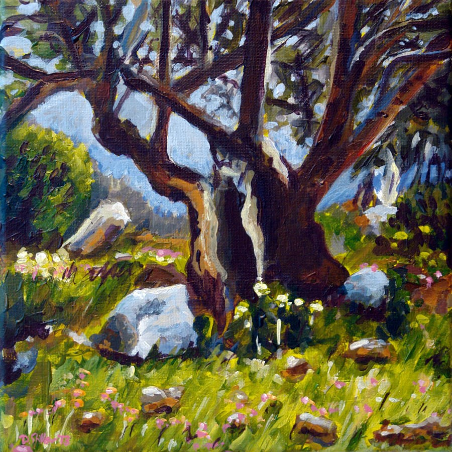 """0668 Mallorcan Olive Tree"" original fine art by Dietmar Stiller"