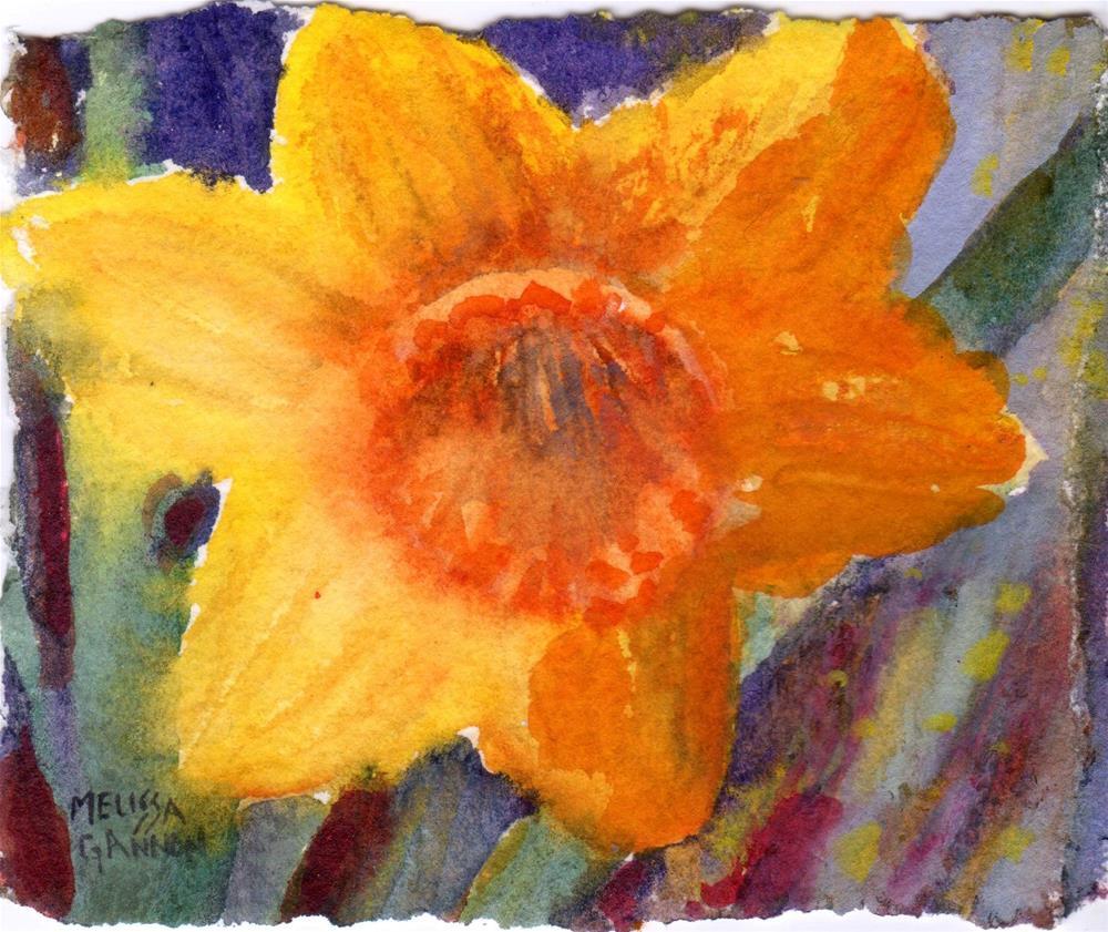 """""""Daffodil Star"""" original fine art by Melissa Gannon"""