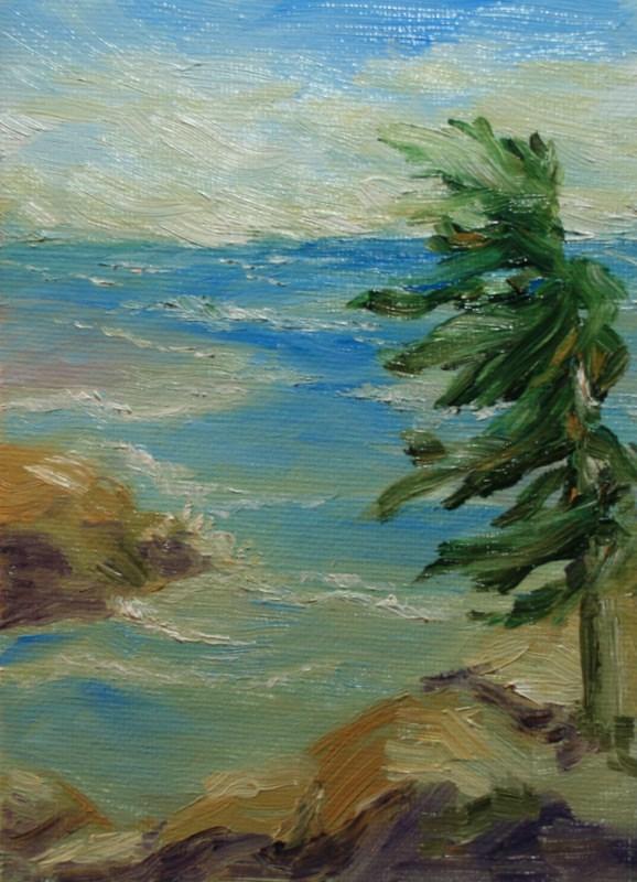 """""""Windblown"""" original fine art by Jean Nelson"""