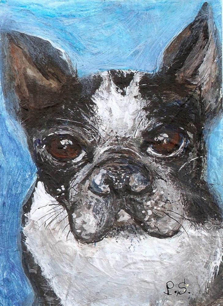 """ACEO Boston Terrier Puppy Dog Animal Art Painting Miniature Penny StewArt"" original fine art by Penny Lee StewArt"