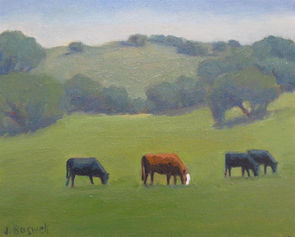 """""""Santa Ynez Cows"""" original fine art by Jennifer Boswell"""