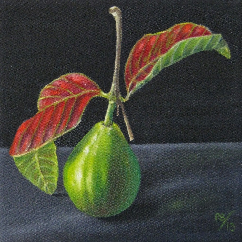 """""""Guava with Leaves"""" original fine art by Pera Schillings"""