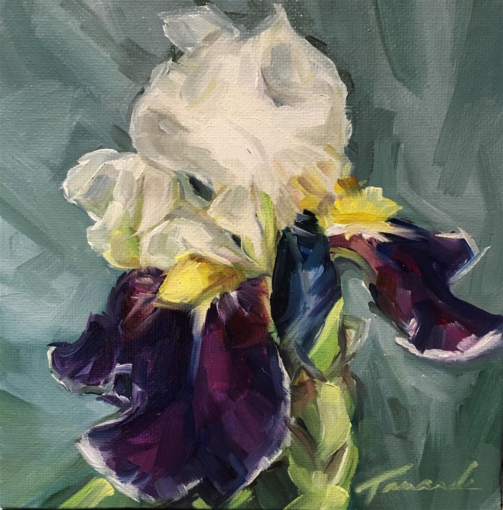 """Iris (19-14)"" original fine art by Tamanda Elia"