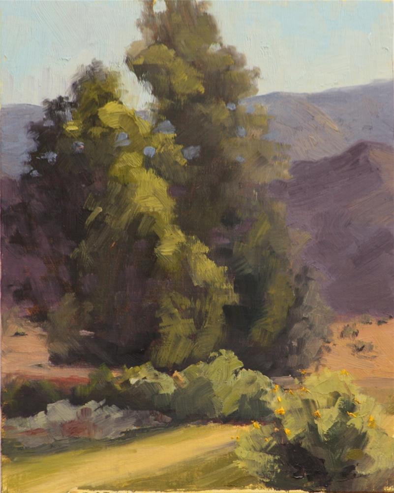 """Early Hot Morning in Salida"" original fine art by Sheila Marie"