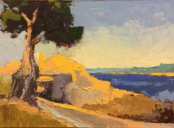 """Pine, Lovers Point"" original fine art by Mary Gilkerson"