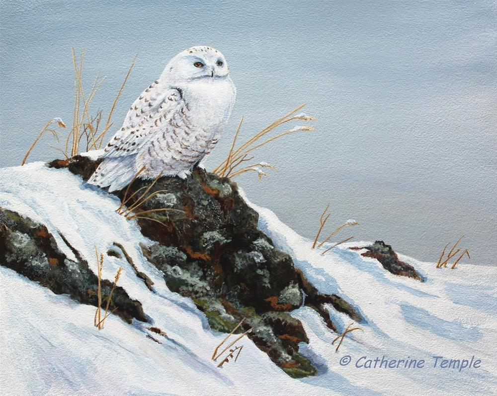 """""""One Snowy Day"""" original fine art by Catherine Temple"""