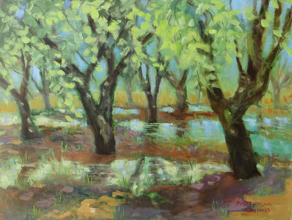 """Time To Irrigate"" original fine art by Rhett Regina Owings"