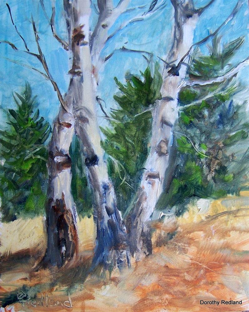 """THREE'S A CROWD"" original fine art by Dorothy Redland"