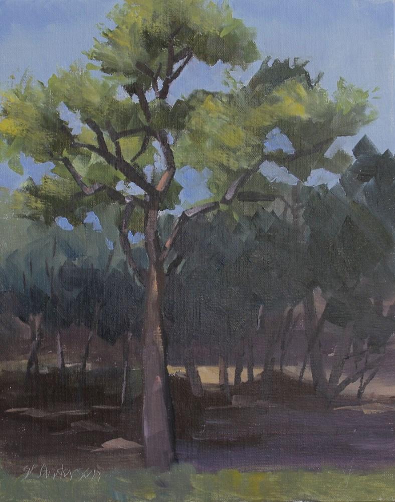 """Live Oak in the Woods"" original fine art by Susan Andersen"