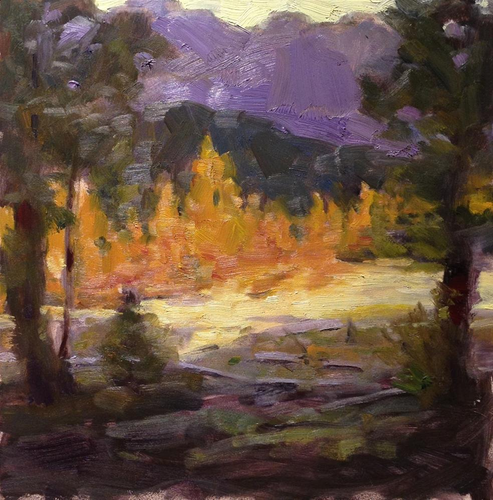 """Trees in Yellowstone"" original fine art by Dorothy Woolbright"