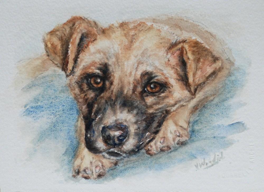 """Jennifer's pup"" original fine art by Vicki Wood"