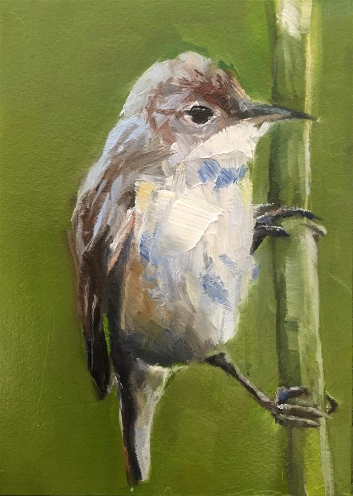 """Reed Warbler"" original fine art by Gary Bruton"