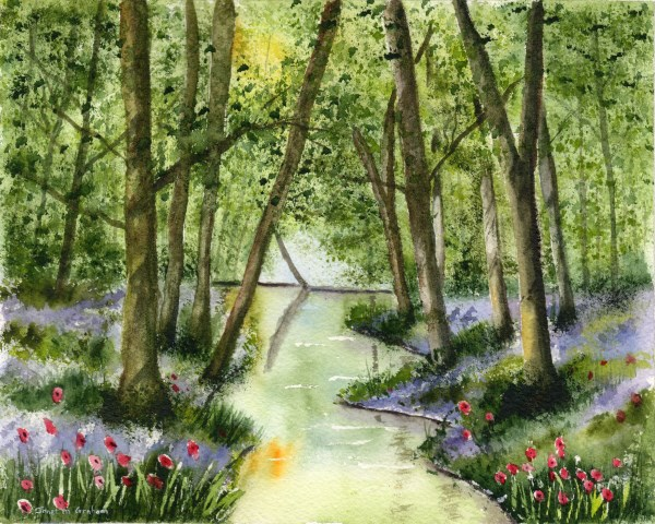 """Bluebell Stream"" original fine art by Janet Graham"