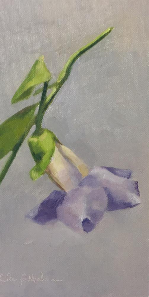"""Blue Sky Vine Study"" original fine art by Cheryl Meehan"