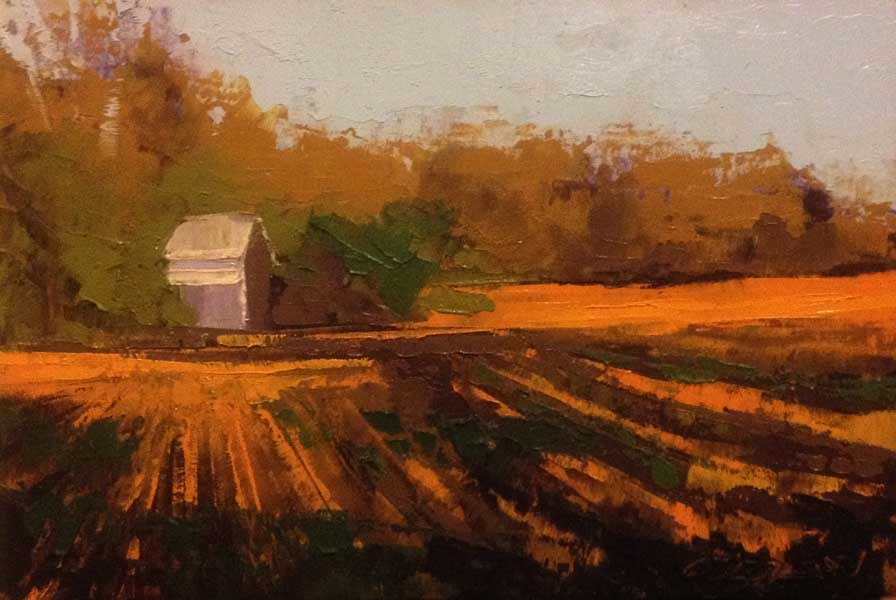 """""""Fields, Light and Shadows"""" original fine art by Mary Gilkerson"""