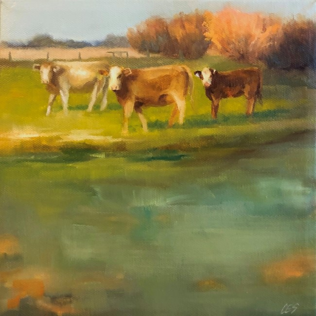 """Just a Day for Charolais"" original fine art by ~ces~ Christine E. S. Code"
