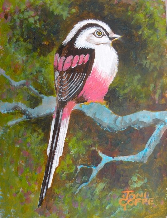 """Longtailed Tit"" original fine art by Toni Goffe"