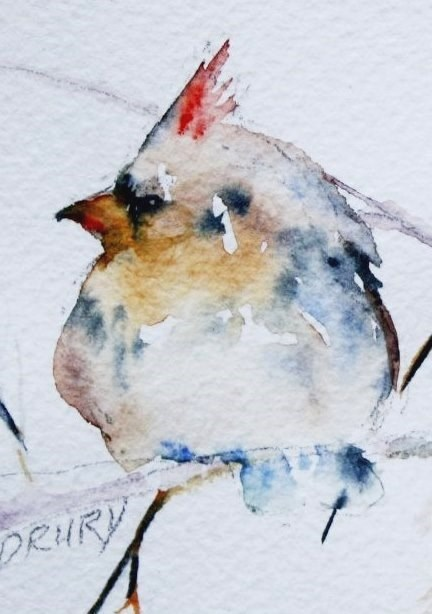 """Female Cardinal"" original fine art by Colleen Drury"