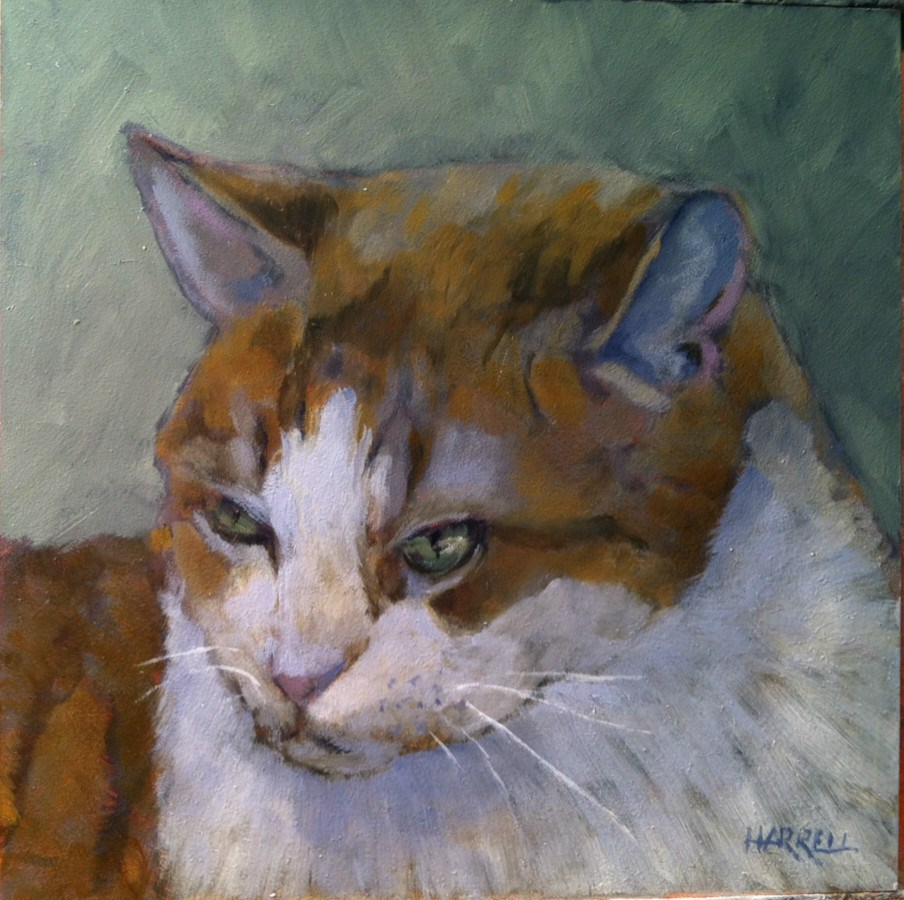 """Norman"" original fine art by Sue Harrell"