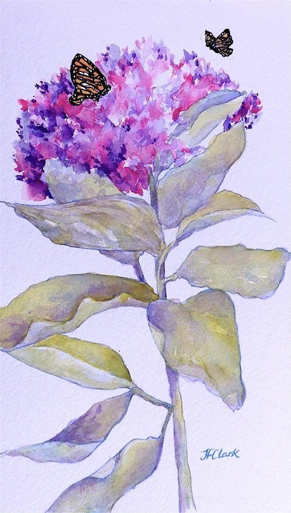 """""""Butterfly Breakfast"""" original fine art by Judith Freeman Clark"""