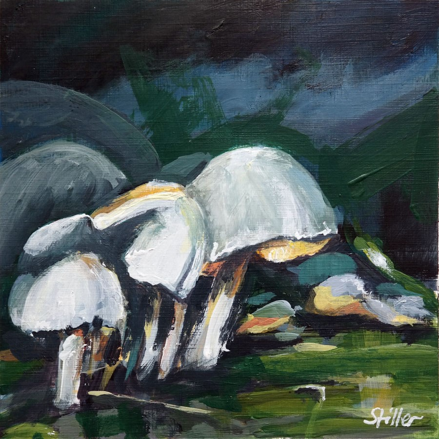 """1892 Mushroom Season 5"" original fine art by Dietmar Stiller"