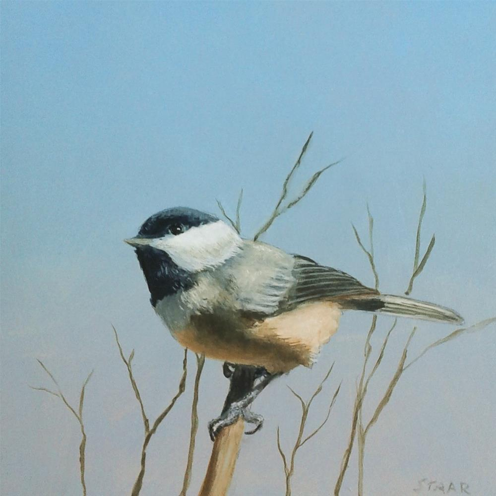"""Chickadee"" original fine art by Staar Caswell"