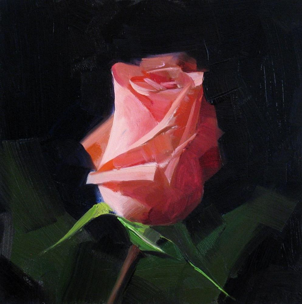 """Pink Rose Study 1"" original fine art by Qiang Huang"