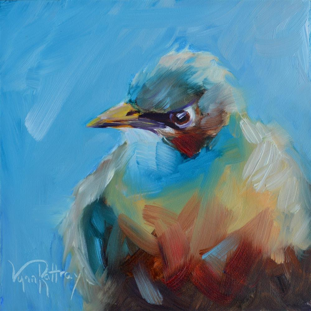 """""""Angry Bird"""" original fine art by Lynn Rattray"""